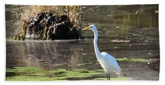 White Egret In The Shallows Beach Towel