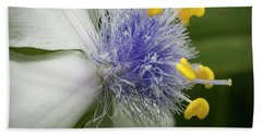 Beach Towel featuring the photograph White Flower by Jean Noren