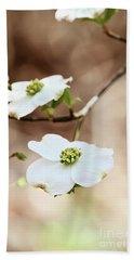 White Flowering Dogwood Tree Blossom Beach Towel