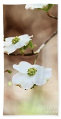 White Flowering Dogwood Tree Blossom Beach Sheet