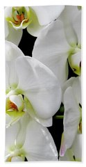 White Orchid Beach Sheet