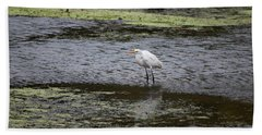 Beach Towel featuring the photograph White Heron On The Hudson by Jeff Severson
