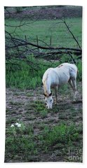 White Horse And A White Flower Beach Sheet by Natalie Ortiz
