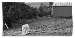 White Horse, New York Beach Sheet