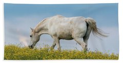 Beach Towel featuring the photograph White Horse Of Cataloochee Ranch 2 - May 30 2017 by D K Wall