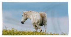 Beach Towel featuring the photograph White Horse Of Cataloochee Ranch - May 30 2017 by D K Wall