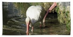 Beach Towel featuring the photograph White Ibis Couple by George Randy Bass