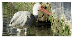 White Ibis Headed Home Beach Towel by George Randy Bass