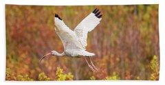 White Ibis In Hilton Head Island Beach Sheet