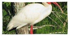 White Ibis Beach Sheet