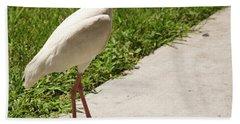 White Ibis Walking Down The Street Beach Sheet