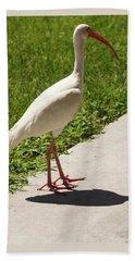 White Ibis Walking Down The Street Beach Towel