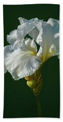 White Iris On Dark Green #g0 Beach Sheet by Leif Sohlman
