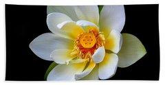 White Lotus Flower Beach Sheet