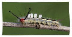 White-marked Tussock Moth 2 Beach Towel