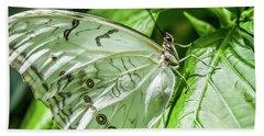 White Morpho Butterfly Beach Sheet