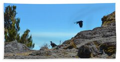 Beach Sheet featuring the photograph White-necked Raven Pair On Kilimanjaro by Jeff at JSJ Photography