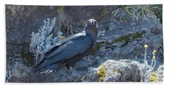 Beach Towel featuring the photograph White-necked Raven With Kilimanjaro Flowers  by Jeff at JSJ Photography