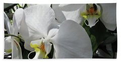 White Orchid Bloom Duo Beach Towel by Tony Grider