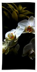 White Orchid With Dark Background Beach Sheet
