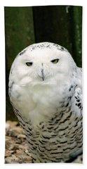 White Owl Beach Towel