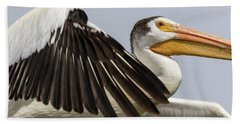White Pelican 2016-3 Beach Sheet by Thomas Young