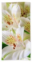 White Peruvian Lilies In Bloom Beach Towel
