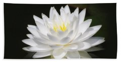 White Petals Glow - Water Lily Beach Towel by MTBobbins Photography