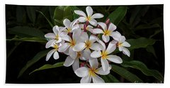 White Plumerias In Bloom Beach Towel