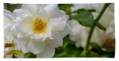 White Rose Beach Sheet