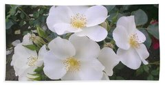 White Roses Bloom Beach Sheet