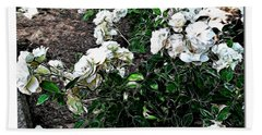 Beach Sheet featuring the photograph White Roses by Joan  Minchak
