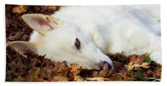 White Shepherd Rests In Autumn Leaves Beach Towel