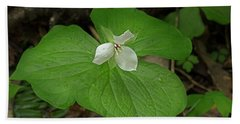 Beach Sheet featuring the photograph White Spring Trillium by Mike Eingle
