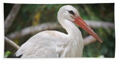 Beach Sheet featuring the photograph White Stork Portrait by Judy Kay