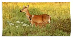 White-tail Doe And Fawn In Meadow Beach Sheet