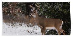 White-tailed Deer - 8904 Beach Towel