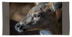White Tailed Deer Facial Profile Closeup Portrait Beach Towel