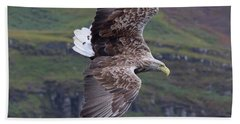 White-tailed Eagle Banks Beach Towel