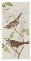 White Throated Sparrow Beach Towel by John James Audubon