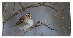 Beach Towel featuring the photograph White-throated Sparrow by Living Color Photography Lorraine Lynch