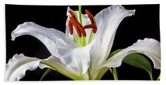 White Tiger Lily Still Life Beach Sheet by Garry Gay