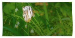 Beach Towel featuring the photograph White Tulip June 2016.  by Leif Sohlman