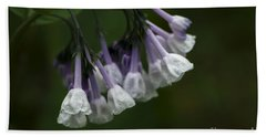Beach Towel featuring the photograph White Virginia Bluebells by Andrea Silies