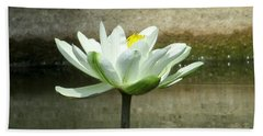 Beach Towel featuring the photograph White Water Lily 2 by Randall Weidner