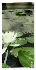 Beach Towel featuring the photograph White Water Lily 3 by Randall Weidner