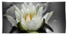White Water Lily Black And White Beach Towel