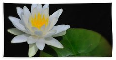 White Water Lily Beach Sheet