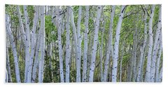 White Wilderness Beach Towel by James BO Insogna
