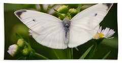 White Wings Of Wonder Beach Sheet by Kerri Farley